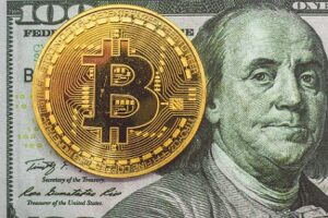 bitcoin-la-criptomoneda-1-en-la-coinmarketcap-2