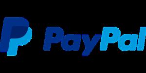 paypal-el-procesador-de-pagos-1-en-el-mundo-1