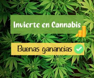 juicy-fields-gana-dinero-invirtiendo-en-cannabis-