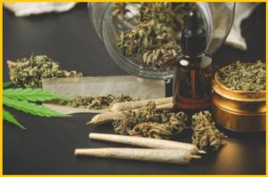 juicy-fields-gana-dinero-invirtiendo-en-cannabis-2